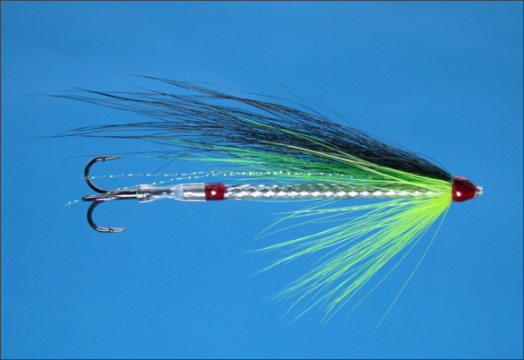 The Snake Tube Fly