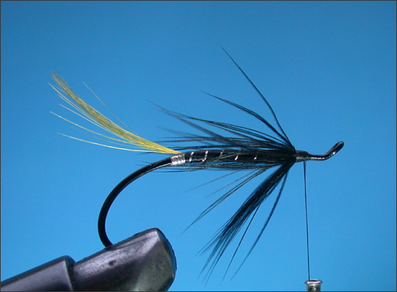 Stoat's Tail Salmon Fly - Step 4
