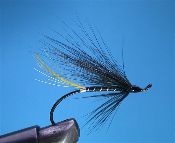 The Stoat's Tail Salmon Fly