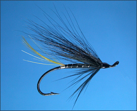 The Stoats Tail Salmon Fly