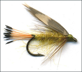 Woodcock & Yellow Trout Fly